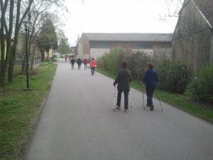 Nordic Walking Baumgarten